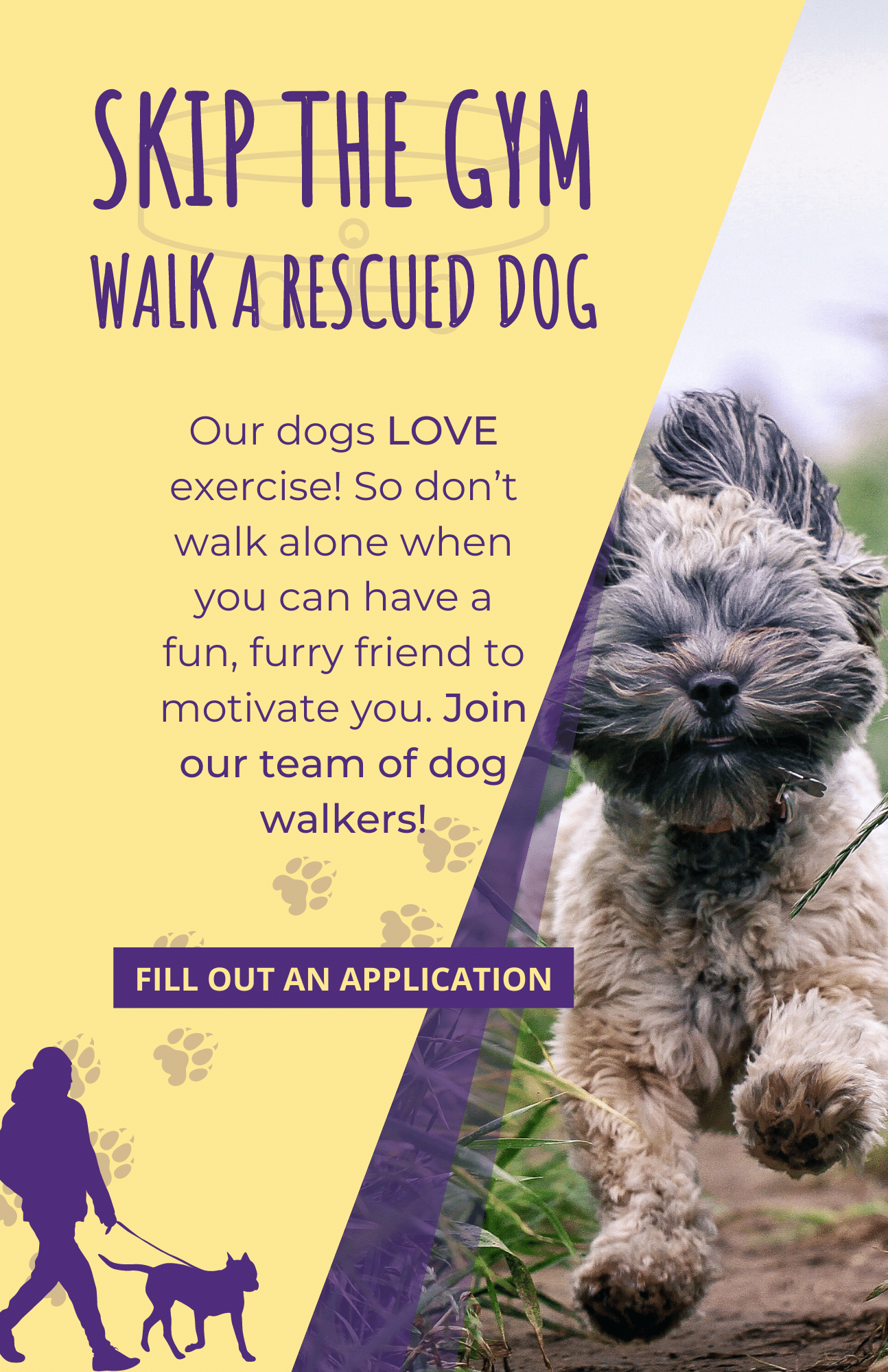 dog-walker-volunteer